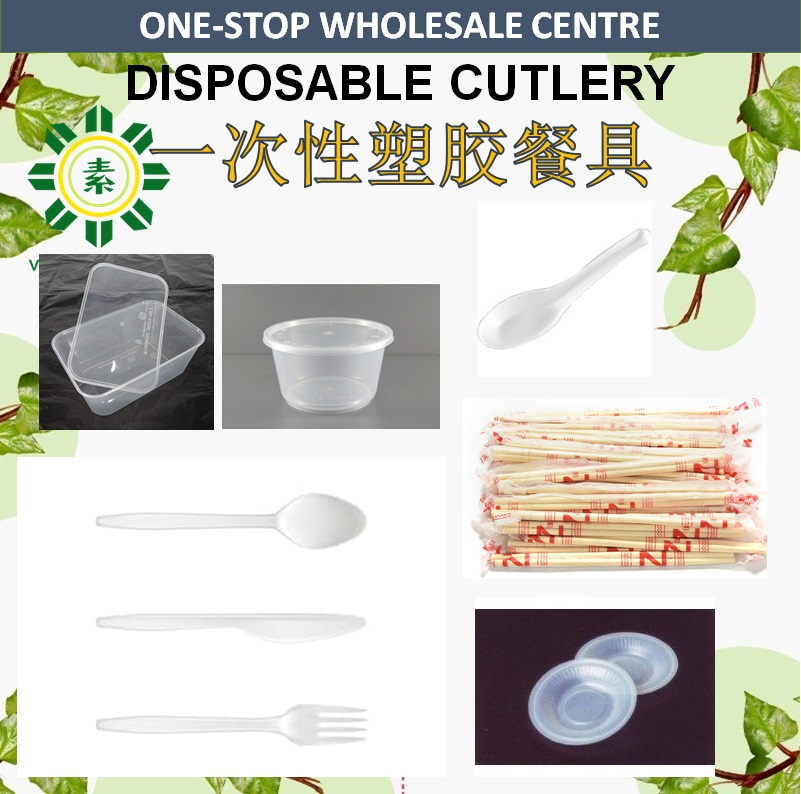 Disposable Cutlery/Plastic Spoon Fork/Bamboo Chopstick/Container-0